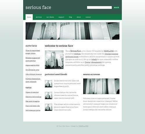 Serious Face html template