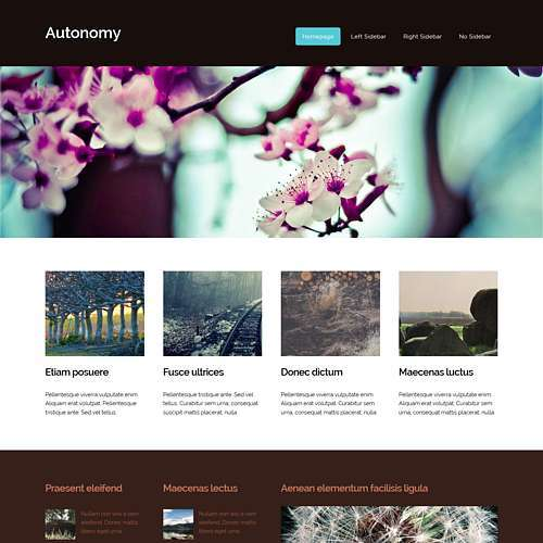 Autonomy html template